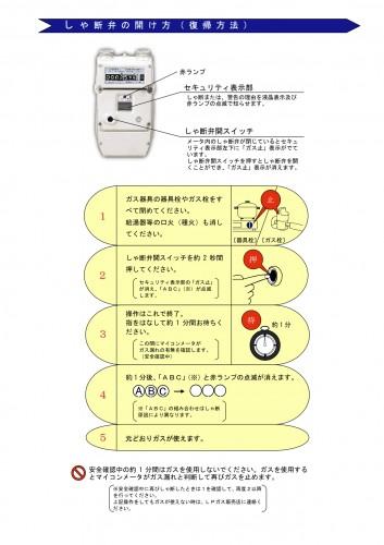 return-manual-1